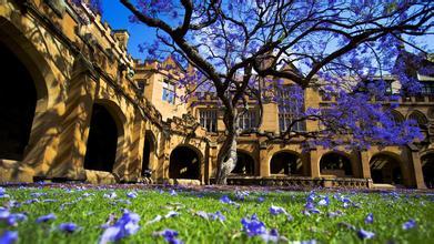 悉尼大学部分专业申请即将关闭