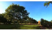 中央昆士兰大学麦基校区