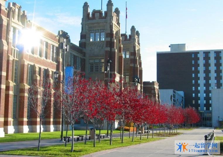 加拿大阿尔伯塔大学本科申请指南