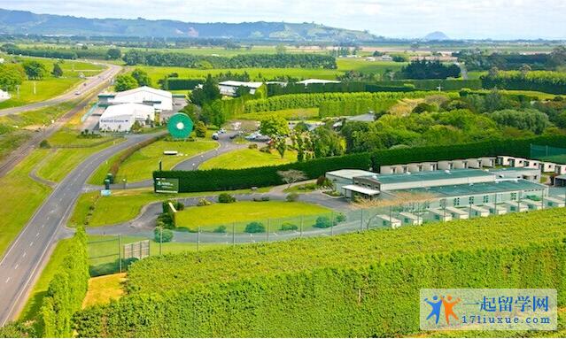 新西兰农业