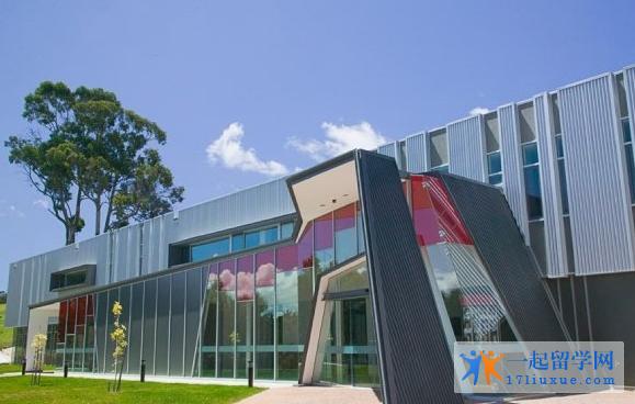 塔斯马尼亚大学信息技术专业课程设置难不难