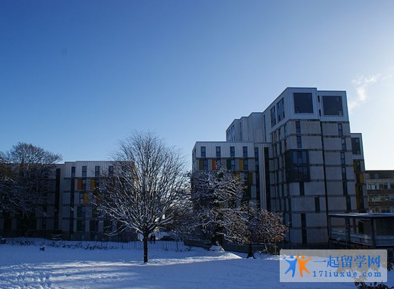 英国斯望西大学