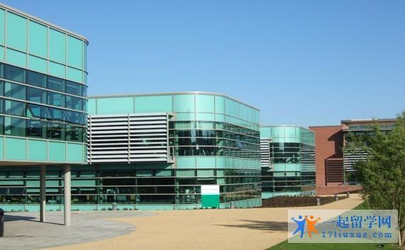 艾芝西尔大学 (3)