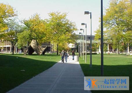 大学图片7