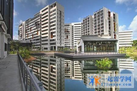 新加坡科技设计大学申请条件(入学要求)如何