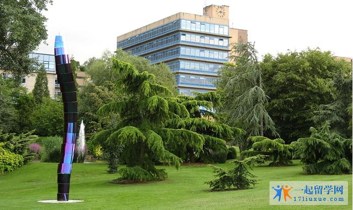 萨里大学校园总体环境
