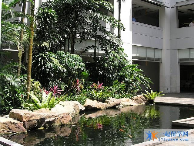 新加坡管理学院学费