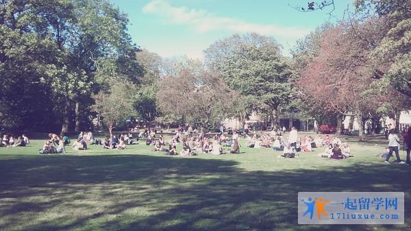爱丁堡大学图书馆草坪