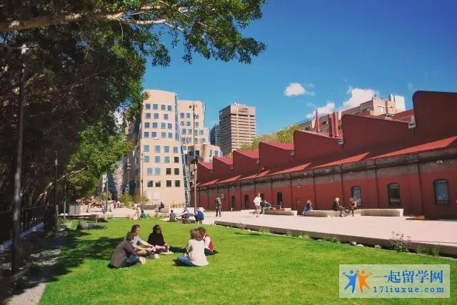 悉尼科技大学排名榜