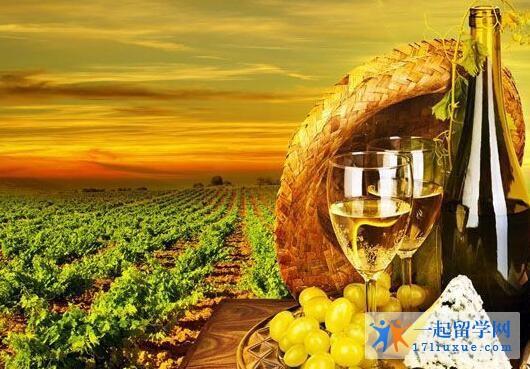 阿德莱德大学葡萄种植与酿酒专业介绍