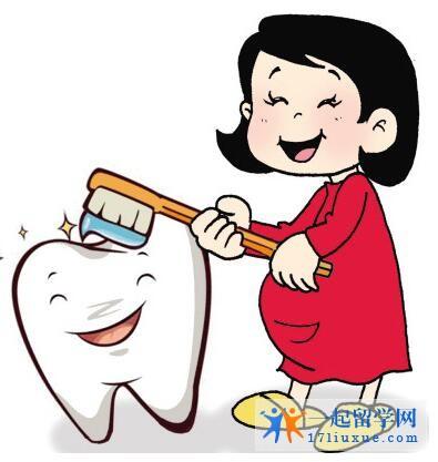 奥塔哥大学牙医专业