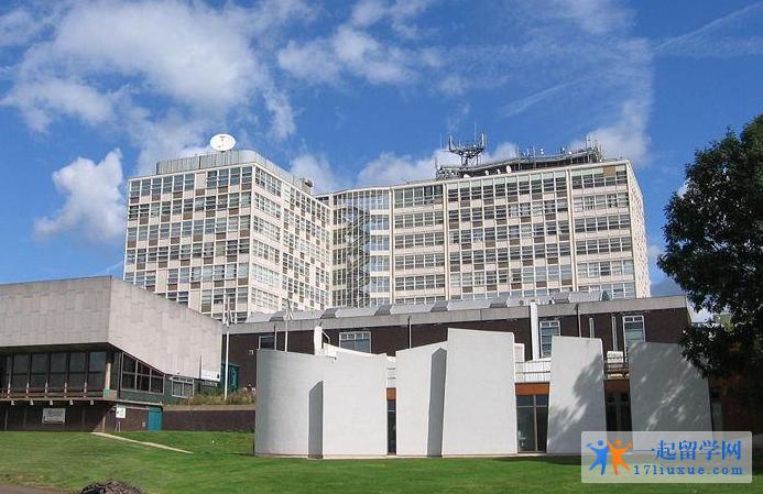 德比大学研究生专业设置