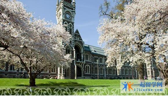 新西兰大学88