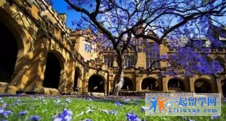 2017悉尼大学商科硕士专业选课攻略,附带商学院商科专业汇总