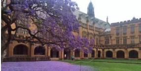 悉尼大学电气工程学学士专业申请条件解析