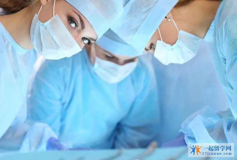 澳洲护理专业的就业前景及申请难易度