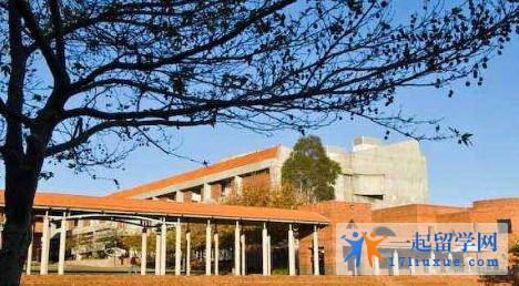 无工作经验可以申请澳洲科廷科技大学MBA硕士哪些课程?