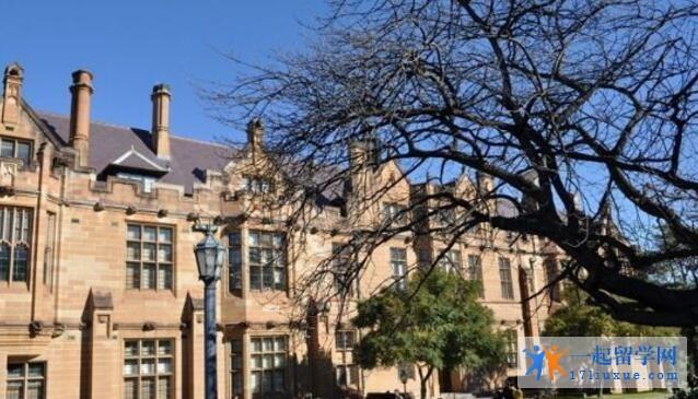 澳洲悉尼大学护理硕士申请要求,就业前景介绍