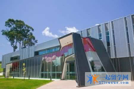 澳洲留学:塔斯马尼亚大学教育学院的小学教师专业入学要求是什么?