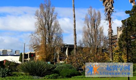 新西兰惠灵顿维多利亚大学申请要求(入学要求)和申请材料解析