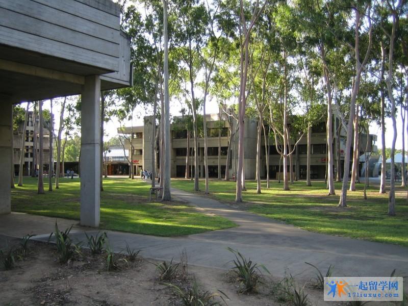 澳洲留学:麦考瑞大学语言班学习攻略及注意事项解析