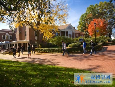 澳洲留学:新英格兰大学语言班学习攻略及注意事项解析
