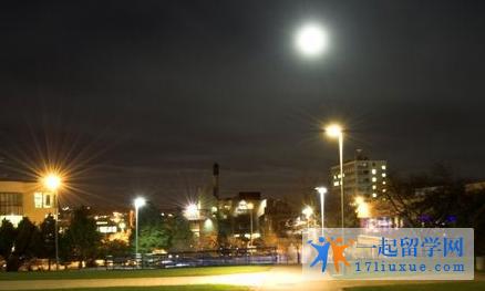 英国新白金汉大学课程设置及录取要求(入学要求)简述