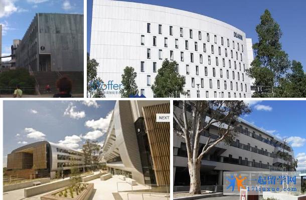 澳洲留学:迪肯大学优势专业入学要求