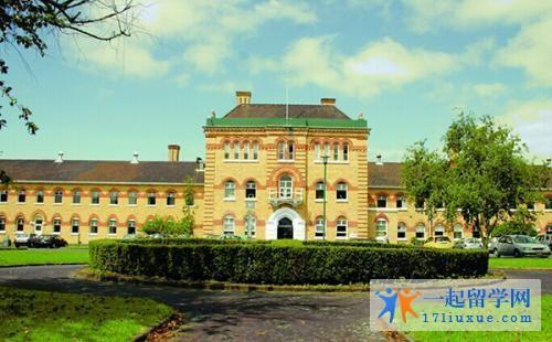 基督城理工学院签证申请流程及申请技巧 ,附新西兰IPP计划