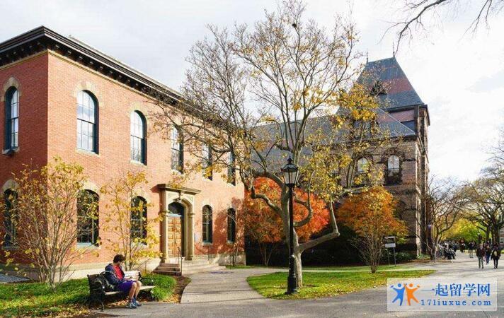 新英格兰大学国际留学生比例及毕业率介绍
