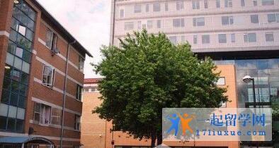 英国伦敦南岸大学中国留学生多吗?