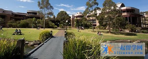 澳洲卧龙岗大学学术实力及入学标准解析