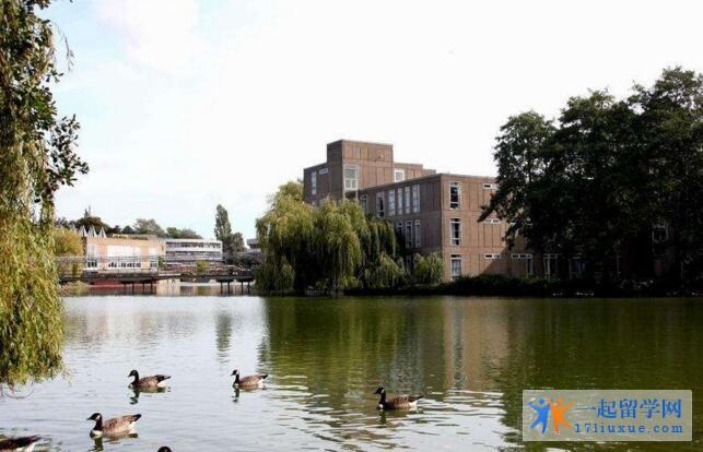 英国约克大学中国留学生多吗?