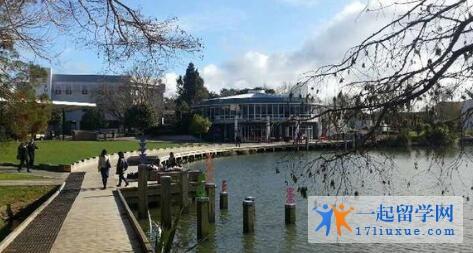 新西兰怀卡托大学学术实力及入学标准解析