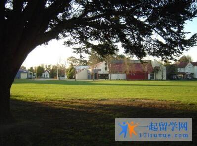 新西兰东部理工学院学术实力及入学标准解析