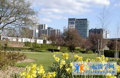 英国西伦敦大学中国留学生多吗?
