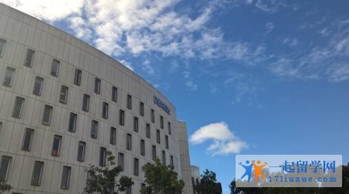 澳洲迪肯大学本科申请条件及学费信息解析