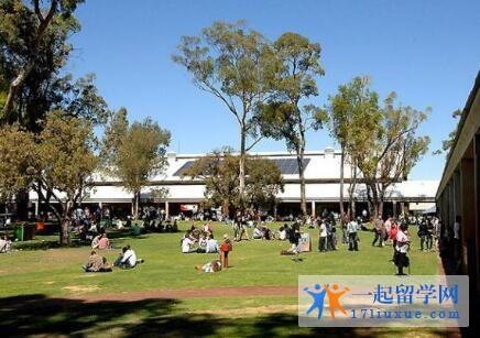 澳洲莫道克大学本科申请条件及学费信息解析