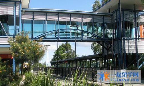 澳洲留学:格里菲斯大学语言要求及其申请流程如何?