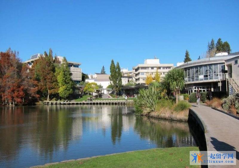 新西兰留学:马努卡理工学院雅思成绩要求及雅思考试小技能介绍