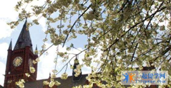 留学英国切斯特大学院校资源及学术信息解析