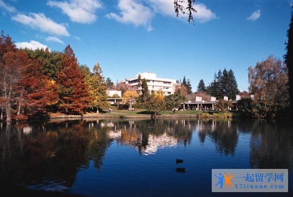 新西兰留学:怀卡托大学学习攻略,你值得拥有