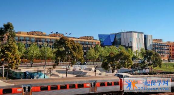 留学南澳大学,院校特色和学术优势解析