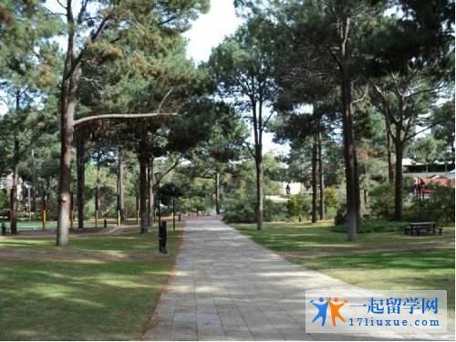 澳洲留学:艾迪斯科文大学医学院学习攻略,学习环境解析