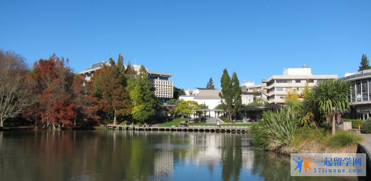 读怀卡托大学语言班有哪些优势