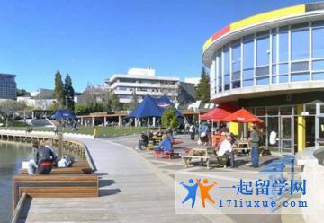 留学新西兰:怀卡托大学研究生申请条件,申请材料,奖学金设置