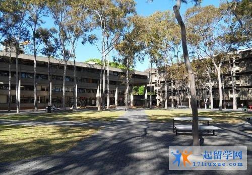 澳洲留学:麦考瑞大学人类科学学院学习攻略,学习环境解析