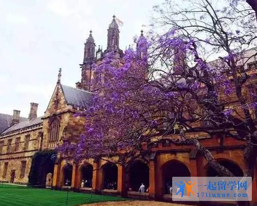 2018年留学澳洲:悉尼大学预科课程申请指南