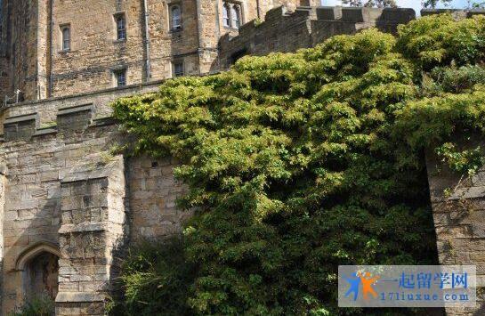 留学英国:杜伦大学商学院课程信息知多少?