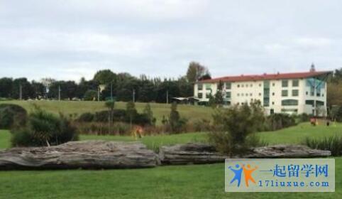 新西兰unitec理工学院教学设施,学习技巧介绍